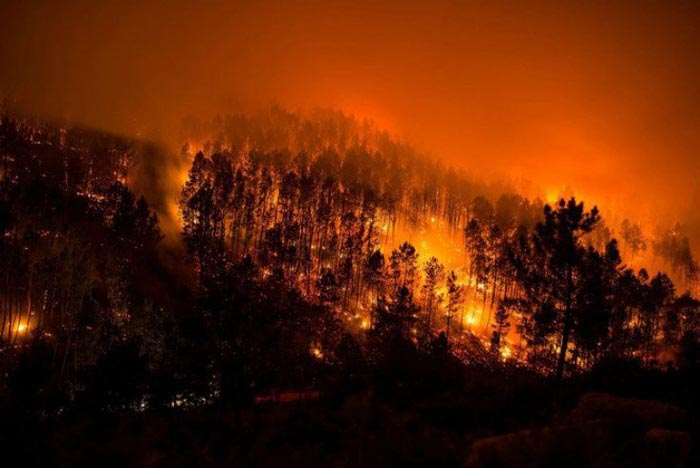 Críticas a la Xunta por la ausencia de políticas preventivas contra incendios