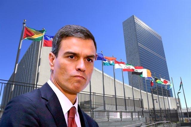 Pedro Sánchez viaja hoy a la ONU