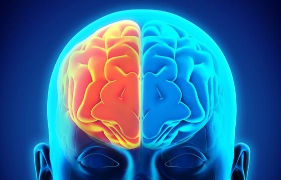 El hombre con dos cerebros