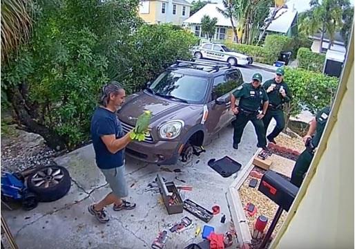 Un loro pide socorro y llaman a la policía