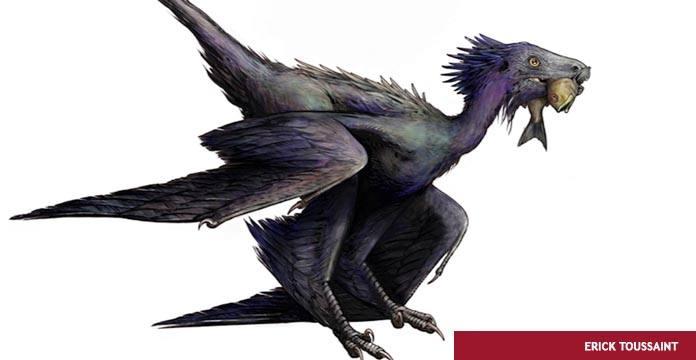 Descubren El Fosil De Un Nuevo Dinosaurio Volador Diario Progresista El mundo de los dinosaurios explicado para niños con imágenes y video. nuevo dinosaurio volador